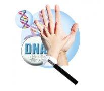 重庆DNA亲子鉴定靠谱么?