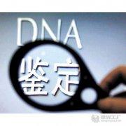 威海市DNA亲子鉴定需要什么材料?