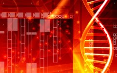 基因检测亲子鉴定