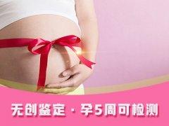 怀孕时可以做亲子鉴定吗