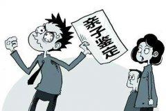 徐州市无创胎儿亲子鉴定需要多少钱?