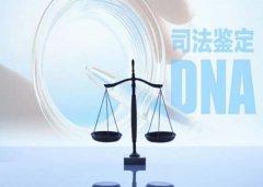 司法亲子鉴定的流程要准备什么